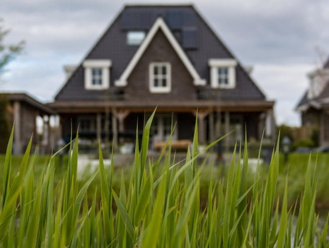 Grass in Front of House | Dr. Crawlspace